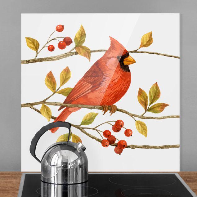 Glas Spritzschutz - Vögel und Beeren - Rotkardinal - Quadrat - 1:1
