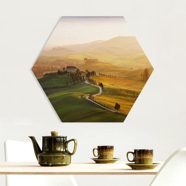 Hexagon Bild Forex - Val d'Orcia
