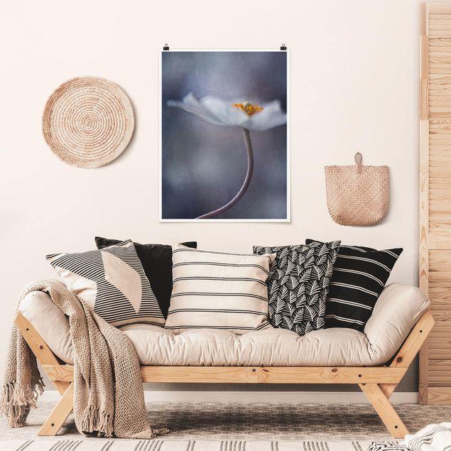 Poster - Weiße Anemonenblüte - Hochformat 3:4
