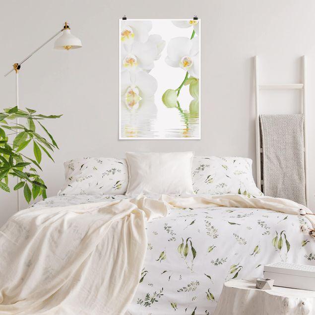 Poster - Wellness Orchidee - Weiße Orchidee - Hochformat 3:2