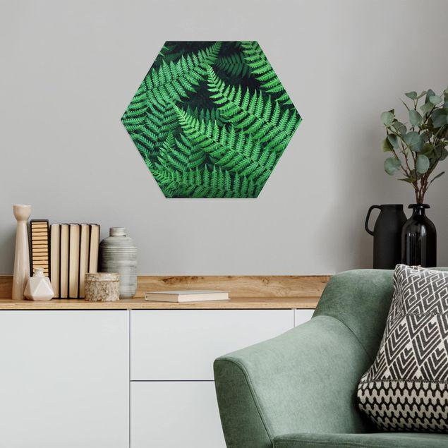 Hexagon Bild Alu-Dibond - Farn