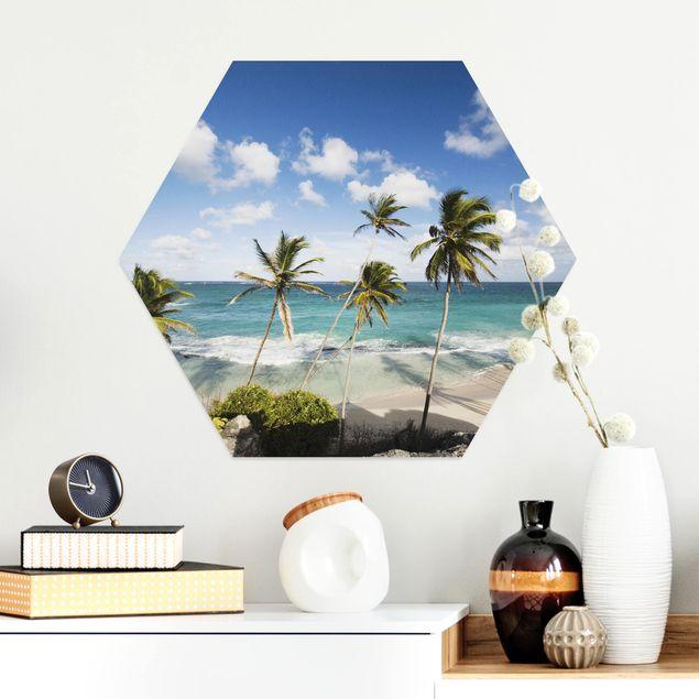 Hexagon Bild Alu-Dibond - Beach of Barbados