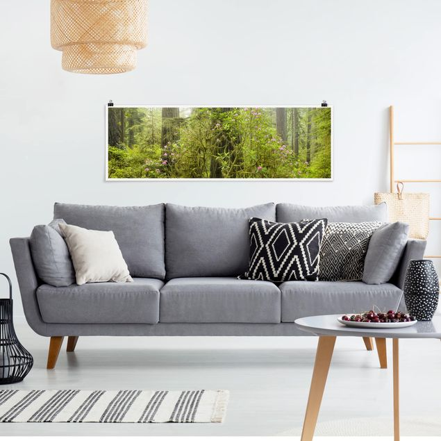 Poster - Del Norte Coast Redwoods State Park Kalifornien - Panorama Querformat