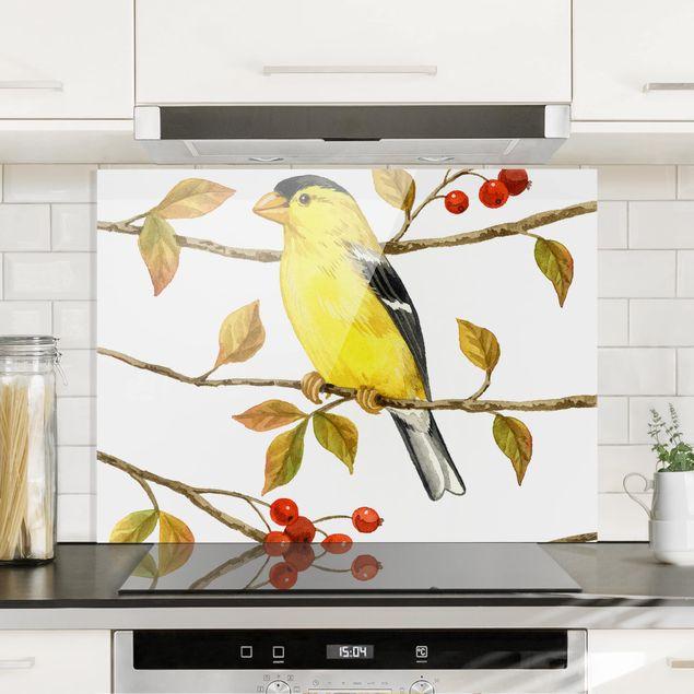 Glas Spritzschutz - Vögel und Beeren - Goldzeisig - Querformat - 4:3