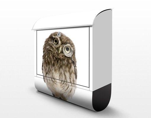 Briefkasten mit Zeitungsfach - Neugierige Eule - Briefkasten mit Tiermotiv