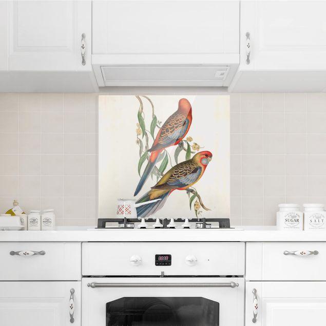 Glas Spritzschutz - Tropische Papageien II - Quadrat - 1:1