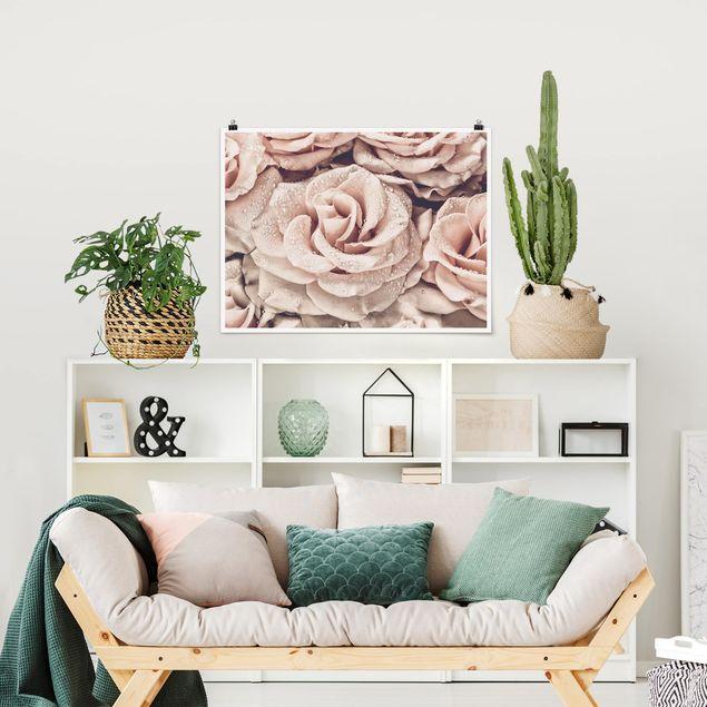 Poster - Rosen Sepia mit Wassertropfen - Querformat 3:4