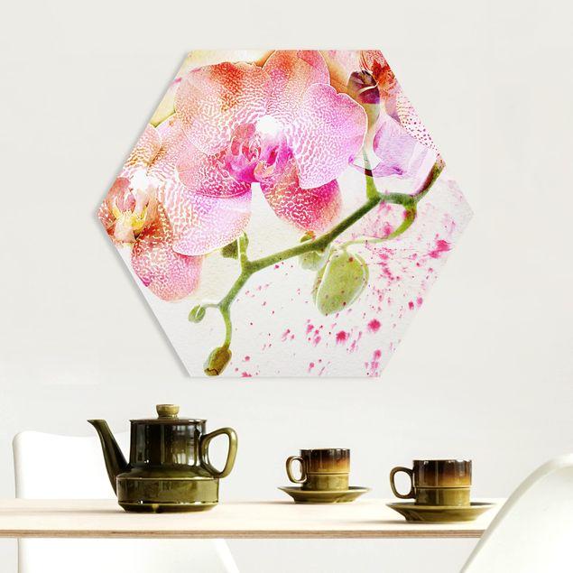 Hexagon Bild Forex - Aquarell Blumen Orchideen