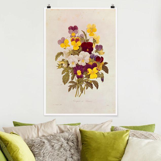 Poster - Pierre Joseph Redouté - Ein Bund von Stiefmütterchen - Hochformat 3:2