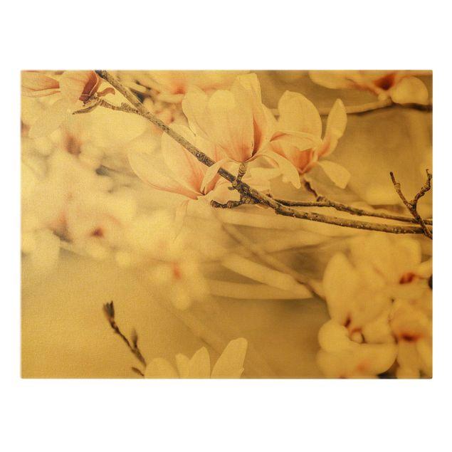 Leinwandbild Gold - Magnolienzweige im Vintagestil - Querformat 4:3