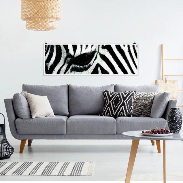 Poster - Zebra Crossing - Panorama Querformat
