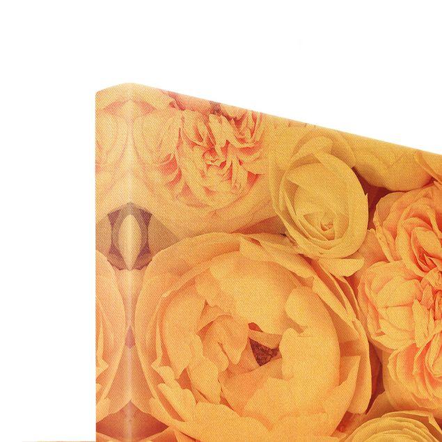 Leinwandbild Gold - Rosen Rosé Koralle Shabby - Querformat 3:2