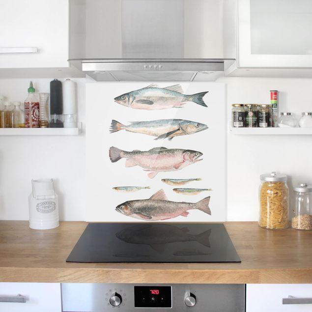 Glas Spritzschutz - Sieben Fische in Aquarell I - Quadrat - 1:1