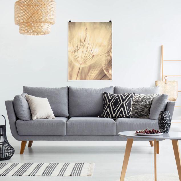 Poster - Pusteblumen Nahaufnahme in wohnlicher Sepia Tönung - Hochformat 3:4