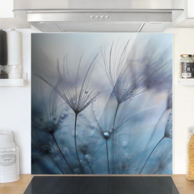 Glas Spritzschutz - Blaue Federn im Regen - Quadrat - 1:1