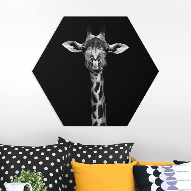 Hexagon Bild Forex - Dunkles Giraffen Portrait