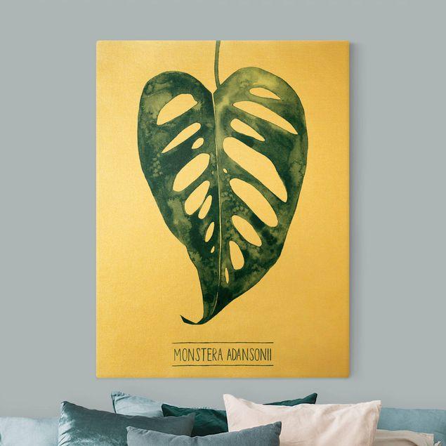 Leinwandbild Gold - Smaragdgrüne Monstera Adansonii - Hochformat 3:4