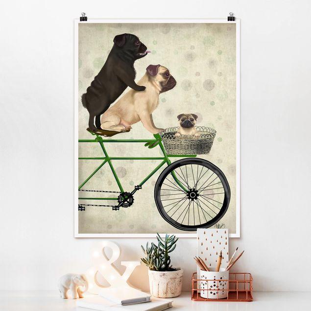 Poster - Radtour - Möpse auf Fahrrad - Hochformat 3:4