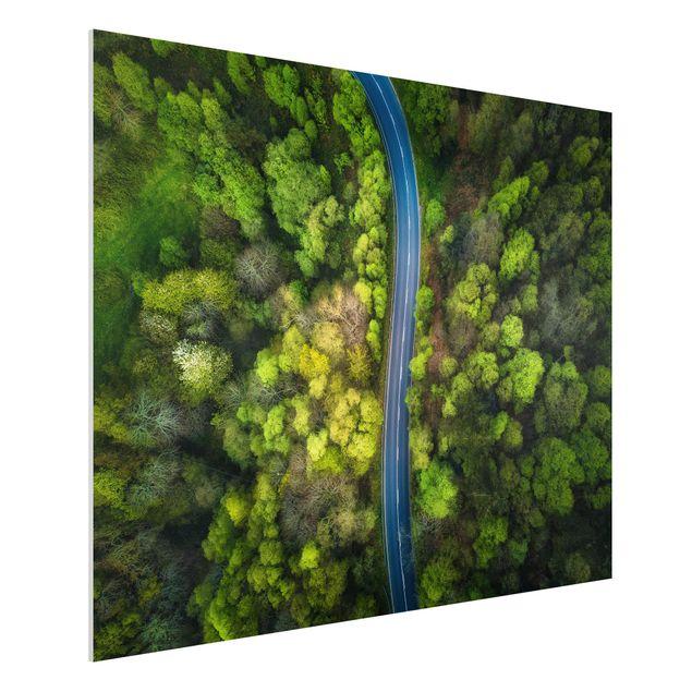 Forex Fine Art Print - Luftbild - Asphaltstraße im Wald - Querformat 3:4