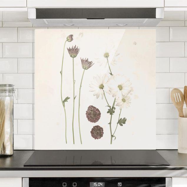 Glas Spritzschutz - Herbarium in rosa IV - Quadrat - 1:1