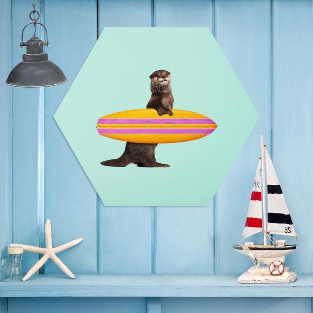 Hexagon Bild Forex - Jonas Loose - Otter mit Surfbrett