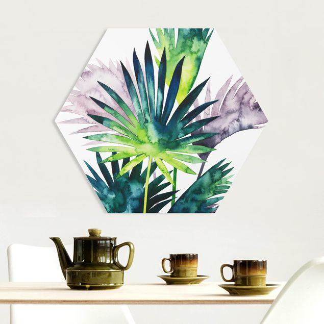Hexagon Bild Forex - Exotisches Blattwerk - Fächerpalme