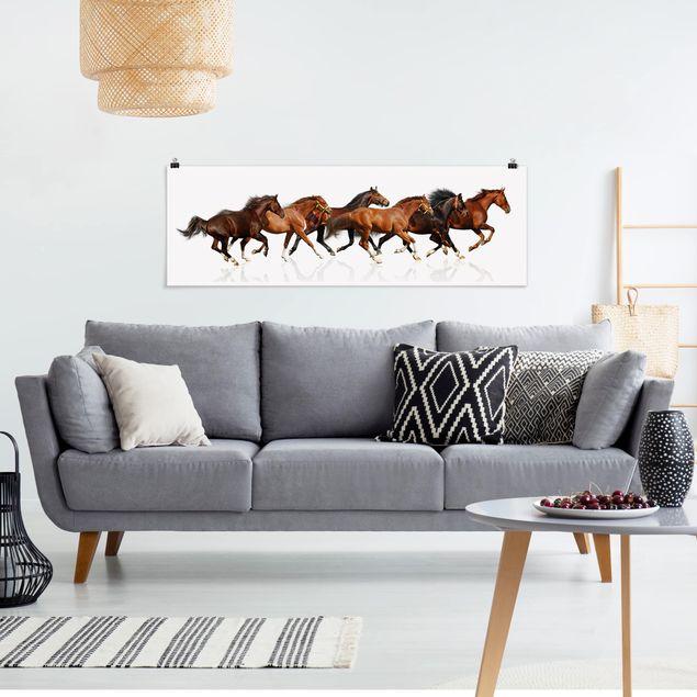 Poster - Pferdeherde - Panorama Querformat
