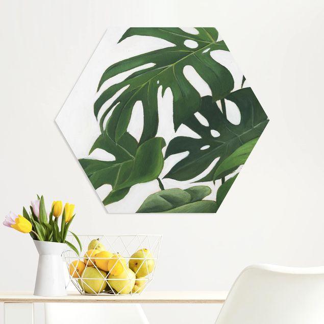 Hexagon Bild Forex - Lieblingspflanzen - Monstera