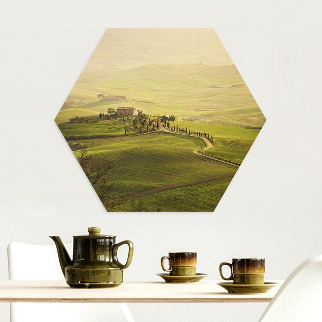 Hexagon Bild Alu-Dibond - Chianti Toskana