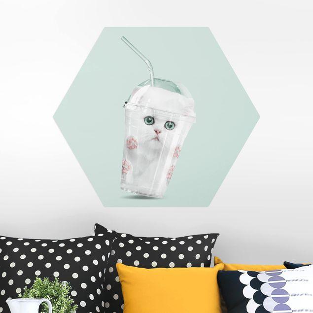 Hexagon Bild Alu-Dibond - Jonas Loose - Shake mit Katze