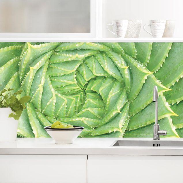 Küchenrückwand - Spiral Aloe