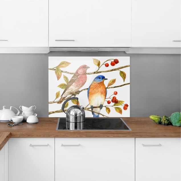 Glas Spritzschutz - Vögel und Beeren - Hüttensänger - Querformat - 4:3