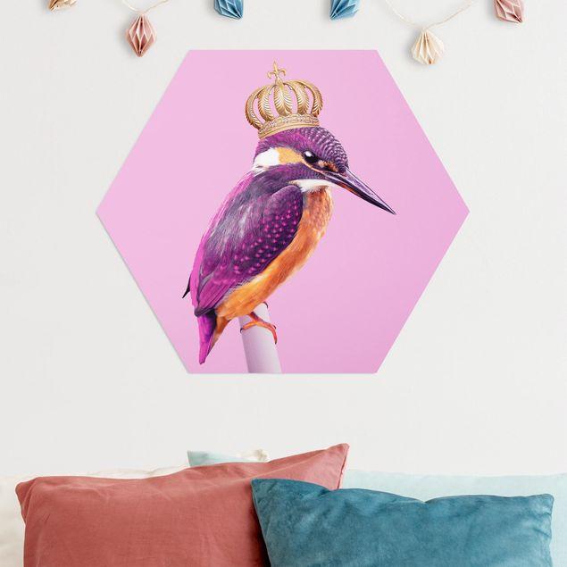 Hexagon Bild Alu-Dibond - Jonas Loose - Rosa Eisvogel mit Krone
