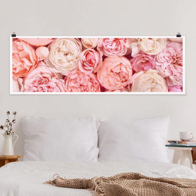 Poster - Rosen Rosé Koralle Shabby - Panorama Querformat