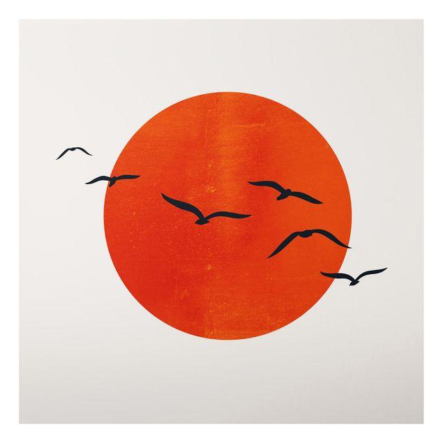 Aluminium Print - Vogelschwarm vor roter Sonne I - Quadrat 1:1
