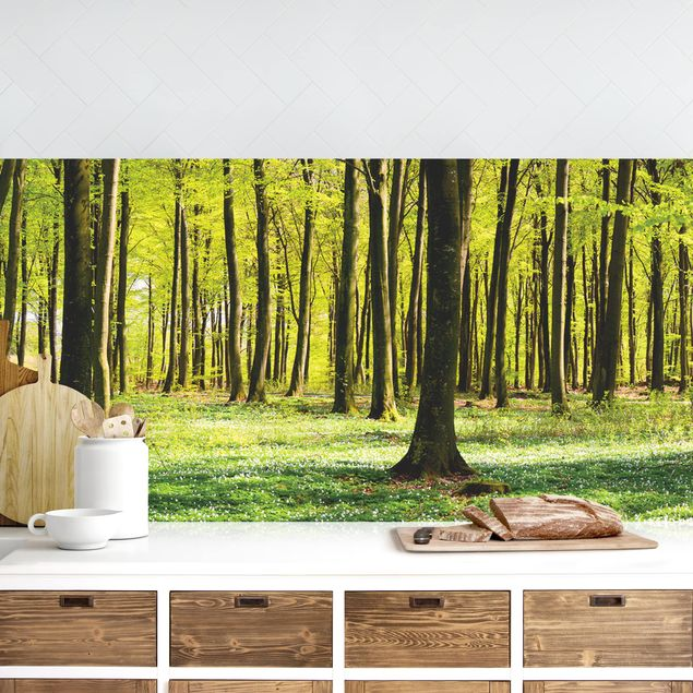 Küchenrückwand - Waldwiese II