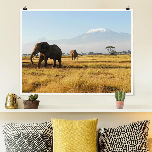 Poster - Elefanten vor dem Kilimanjaro in Kenia - Querformat 3:4