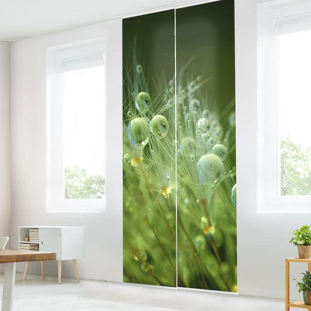 Schiebegardinen Set - Grüne Samen im Regen - Flächenvorhang