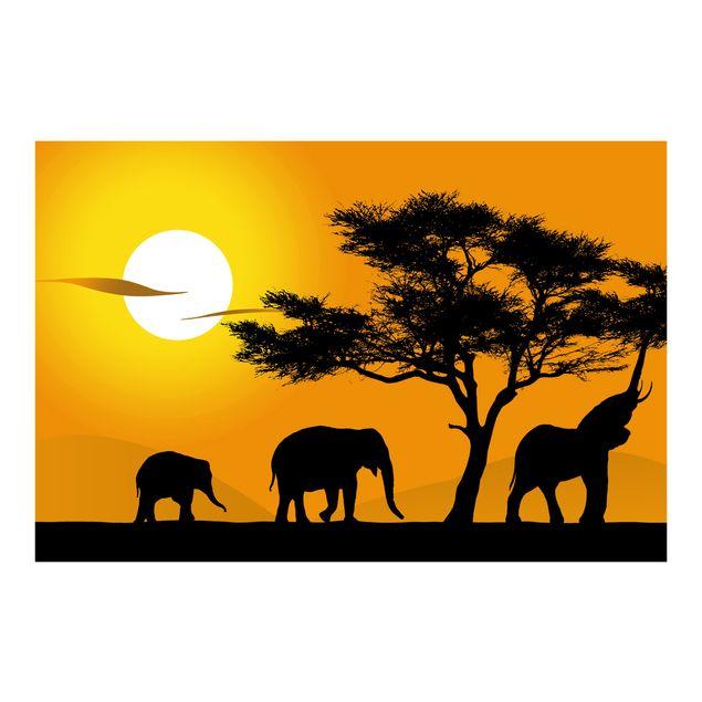 Fototapete African Elefant Walk