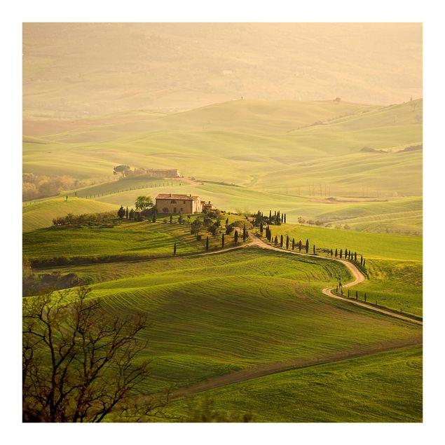 Fototapete Chianti Toskana