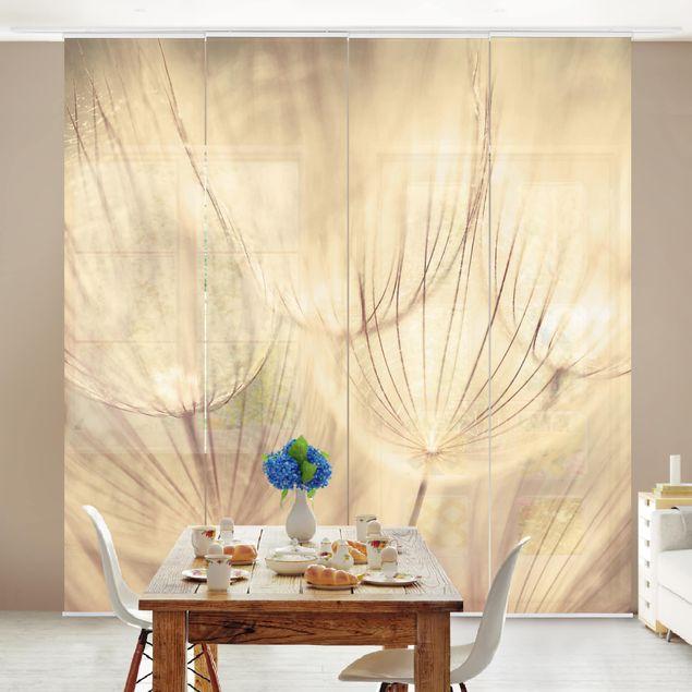 Schiebegardinen Set - Pusteblumen Nahaufnahme in wohnlicher Sepia Tönung - Flächenvorhänge