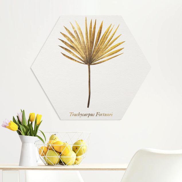 Hexagon Bild Forex - Gold - Palmenblatt