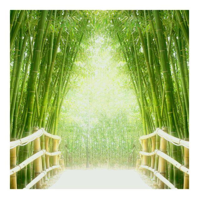 Fototapete Bamboo Way