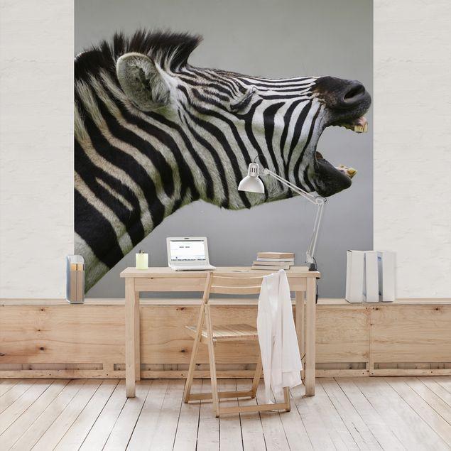 Fototapete Brüllendes Zebra