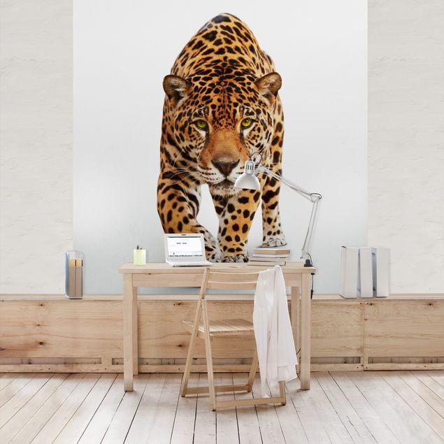 Fototapete Creeping Jaguar