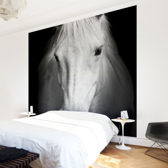 Fototapete Dream of a Horse