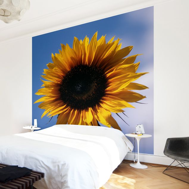 Fototapete Sunflower Trio Teil 1