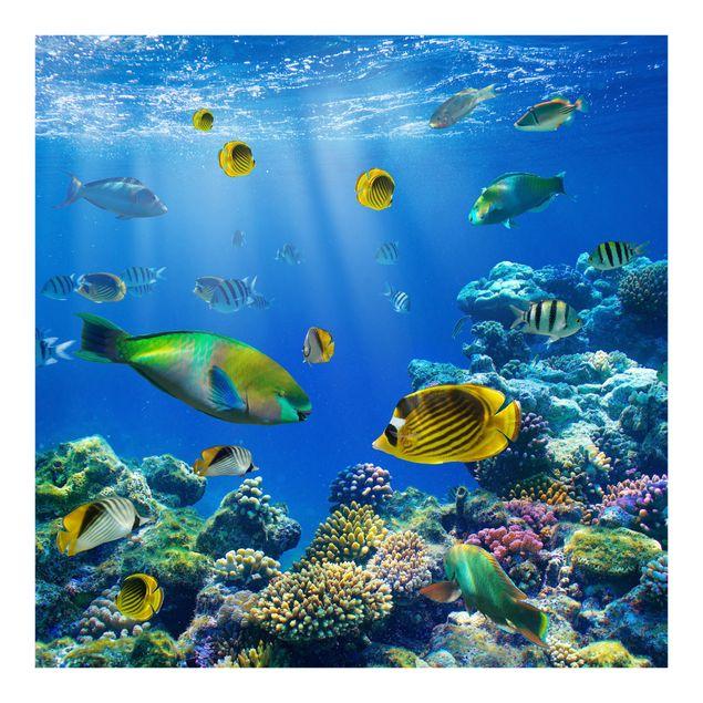 Fototapete Underwater Lights