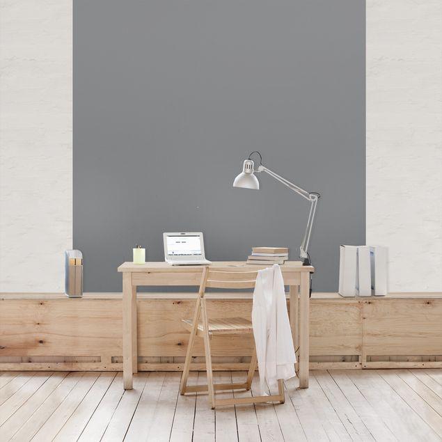 Fototapete Colour Cool Grey