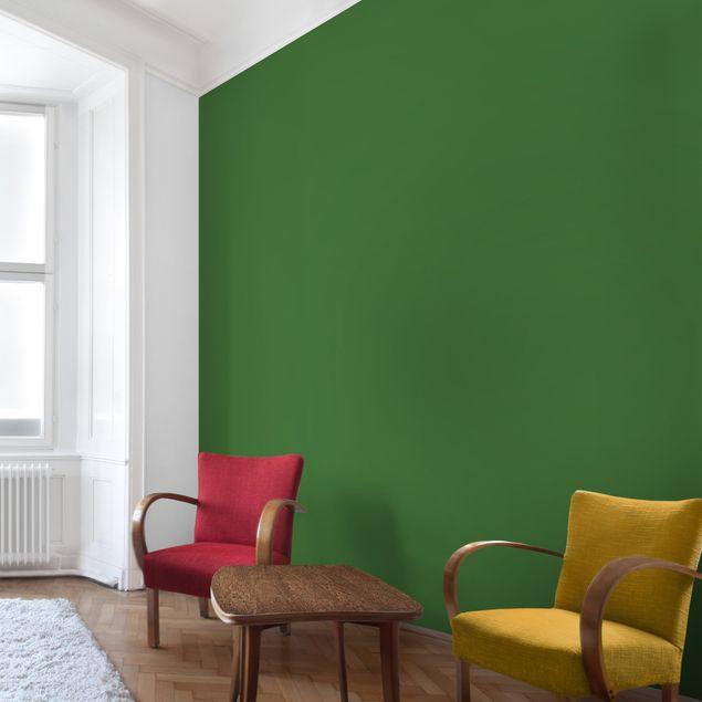 Fototapete Colour Dark Green